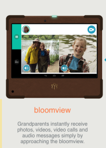Visit the Bloomviewer website.