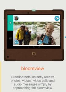 Visit the Bloomviewer website.